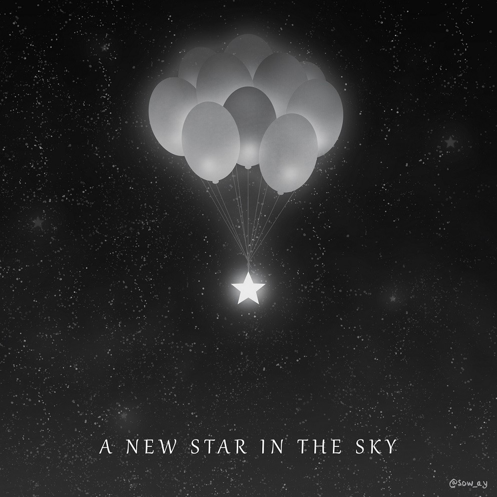 A new star in the sky par Sow