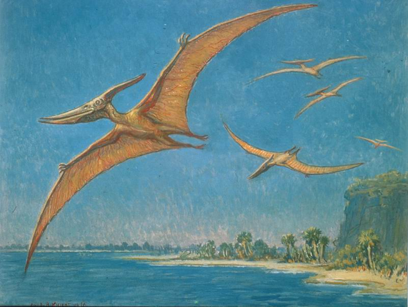 Charles R Knight, Pteranodon, Natural History Museum of Los Angeles County,