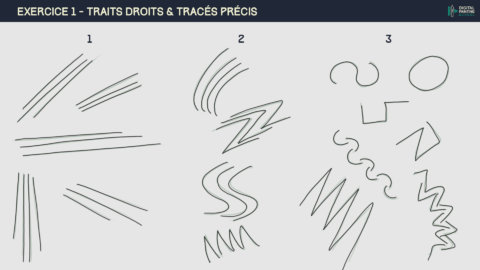 2019_02_19_DPS-1-2-1-exercice_1 traits droits