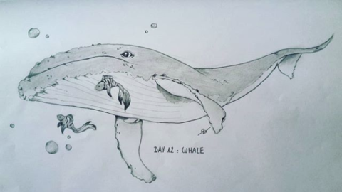 Day 12 : Whale (Inktober 2018)